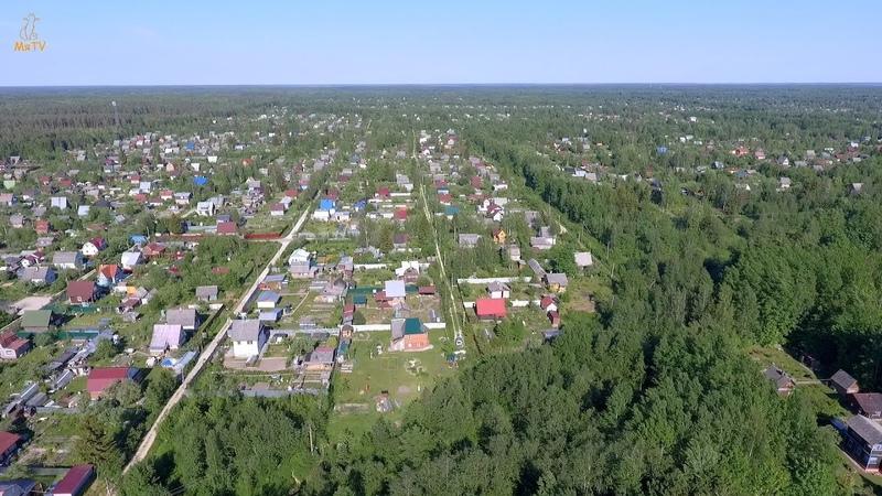 Садоводческий массив Мшинская с воздуха (район станции Росинка)Mshinskaya, Leningrad region