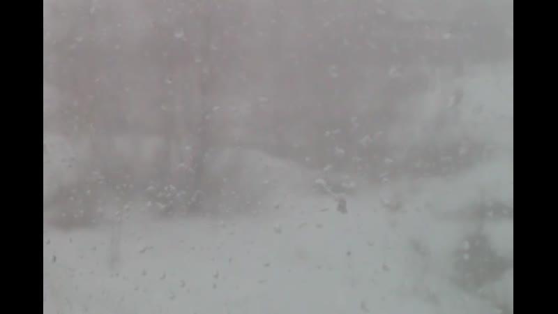 февральский апрель 22апреля2020 луковецкий сижудома регион29