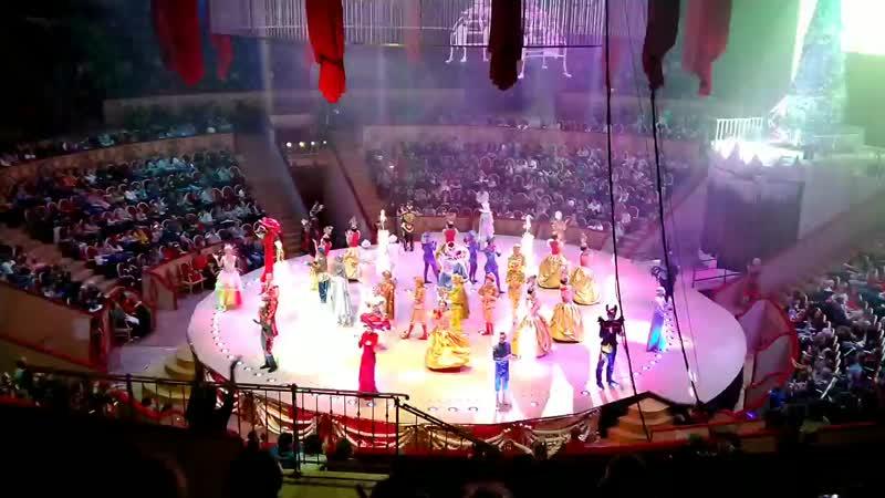 Цирковое представление Волшебные фонтаны 13 месяцев 22 12 19 СПБ