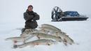 ЩУКИ СОШЛИ С УМА БЕШЕННЫЙ ЖОР СЕВЕР РЕКОРДЫ и ДИКИЕ МЕСТА Лучшая зимняя рыбалка в жизни