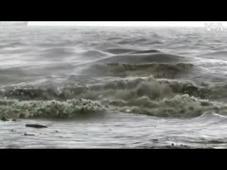 На побережье ЮАР сняли на видео бутылочный прибой. Тонны пластиковых бутылок и другого мусора накрыли пляжи города Дурбан.