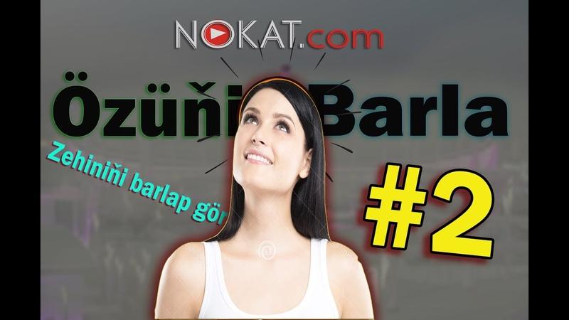 Ozini barla 2 (zehin basleshigi)