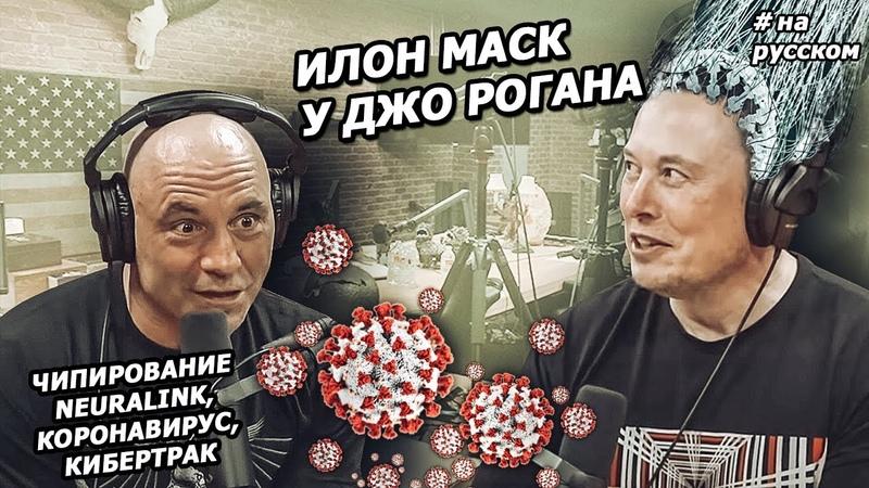 Интервью Илона Маска у Джо Рогана 2020 На русском