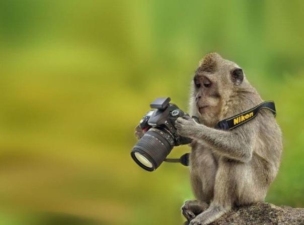 Магарыч Я фотограф. Снимаю для души и не ищу коммерческой наживы. Есть заказ- беру. Нет... Даже не ищу. В интернете сижу в одном сообществе. Уже очень долго и люди там выходит мне не чужие. Вижу
