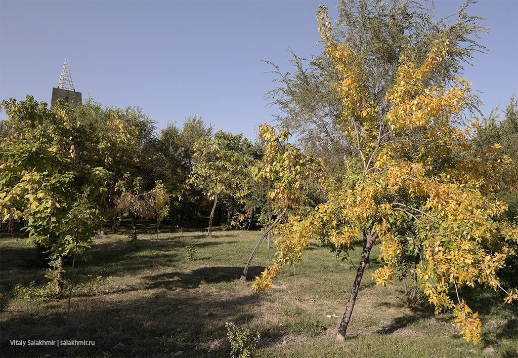 Осень в Бишкеке, сентябрь 2019