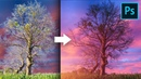 Remove Fringes Around Trees During Sky Swap! Photoshop Tutorial