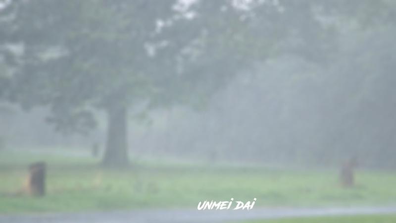 FREE Summer rain Beat Sad X Type Beat Piano Beat