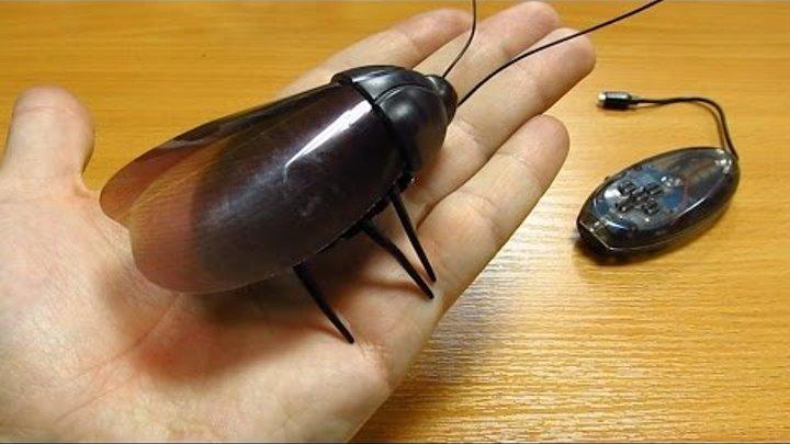 Робот жук таракан на радиоуправлении из Китая