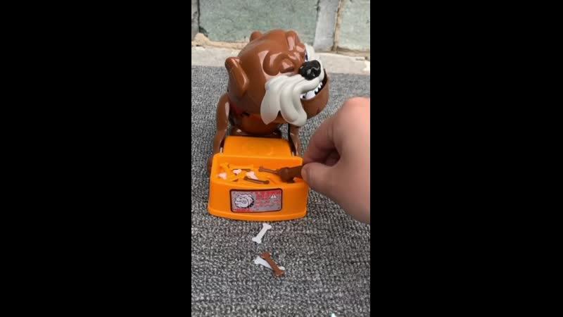 Шалость Плохая Собака игра шалость игрушки антистресс шутка