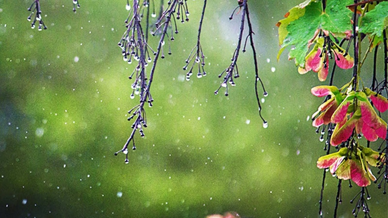 Relaxing Piano Rain Thunder Sounds Soothing Music for Sleeping Stress Relief Relaxation ★2