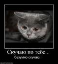 Фотоальбом Артема Загоракиса