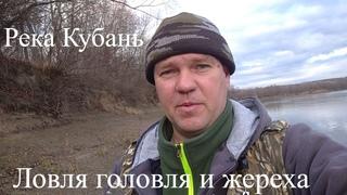 Ловля голавля и жереха на реке Кубань 06,01,21г.
