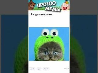 Мемчики и Приколы с Животными 2021  Смешные Мемы с Котами за 4 Октября #shorts