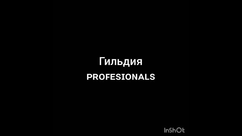 Гильдия PROFISIONALS