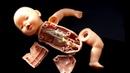 Как ПОЧИНИТЬ Куклу БЕБИ БОН?! РАСПИЛ Куклы! ЧТО ВНУТРИ Baby Born ?