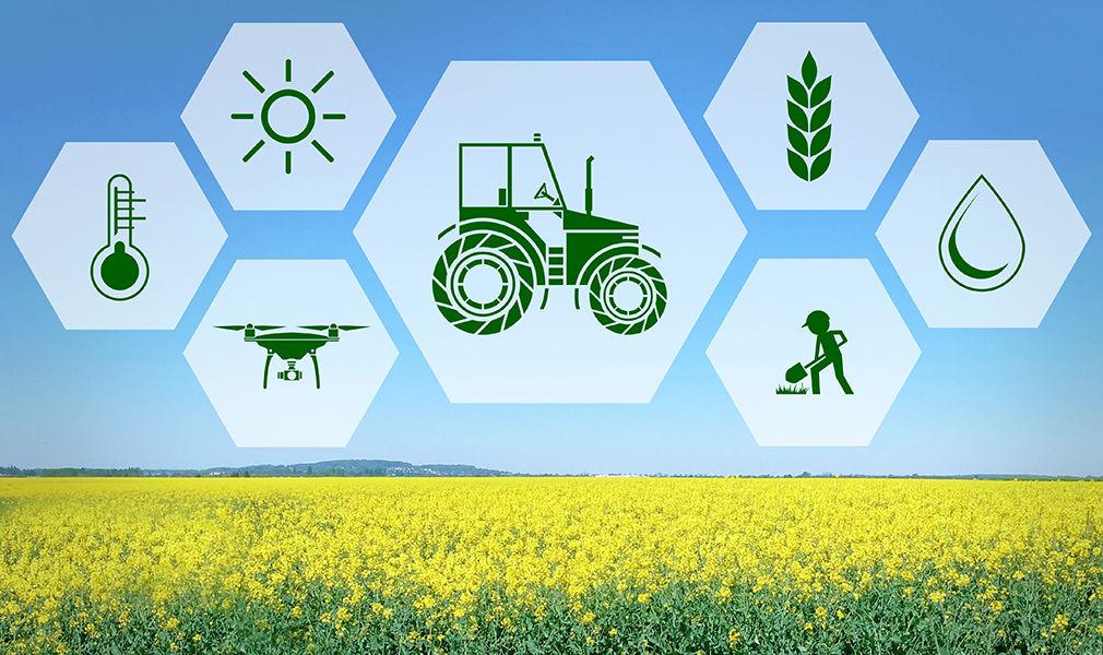 Петровские аграрии могут получить льготные кредиты на цифровизацию своих хозяйств
