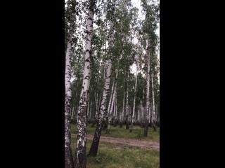 วิดีโอโดย Anna Kosterina