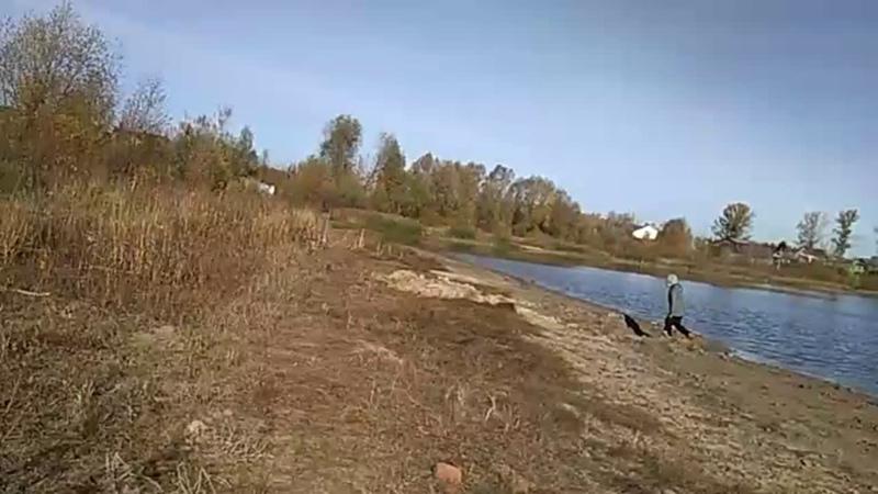 Настя Сергеева Live