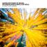 United rhythms of brazil os digitalistas mayla da viola feat dj leao