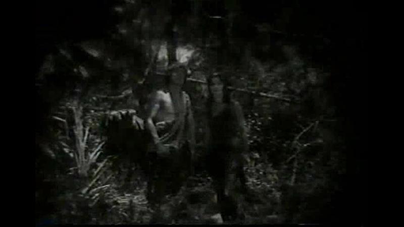 Тарзан Тигр Tarzan the Tiger 1929 12