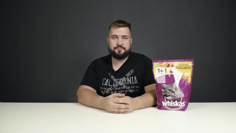 Вискас сухой корм для кошек - Обзор корма Whiskas и состав корма - Корм Вискас для кошек или нет.mp4