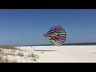 Giant Kite at the Beach