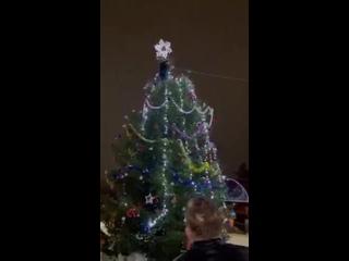 В Ярославской области мужчина влез на новогоднюю ель