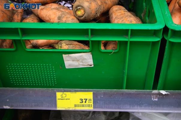 В объектив фотографа «Блокнот Волгодонск» попали овощи из...