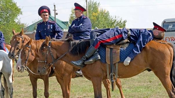 Фотограф из Новочеркасска участвует в региональном...