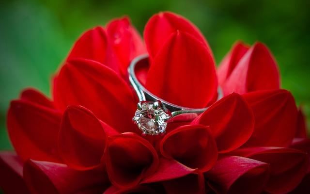 Что подарить на День святого Валентина? топ подарков на день влюбленных,