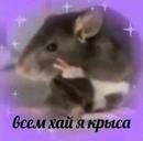 Петоканова Анастасия | Оренбург | 8