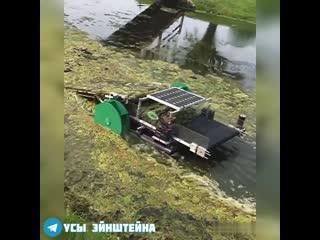 Идея для чистки водоемов