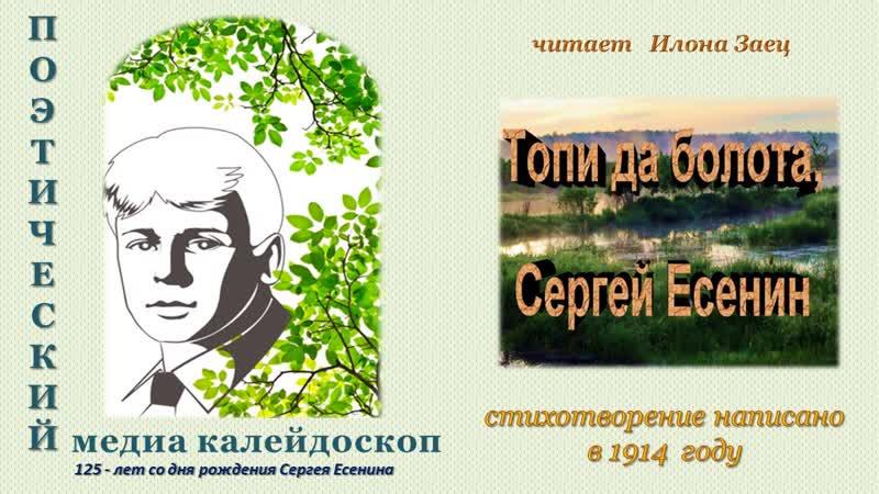 стихотворение С Есенина Топи да болота