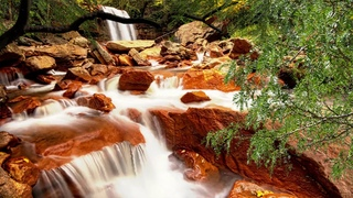 Waterfall with bird singing - Ambient sounds - HD