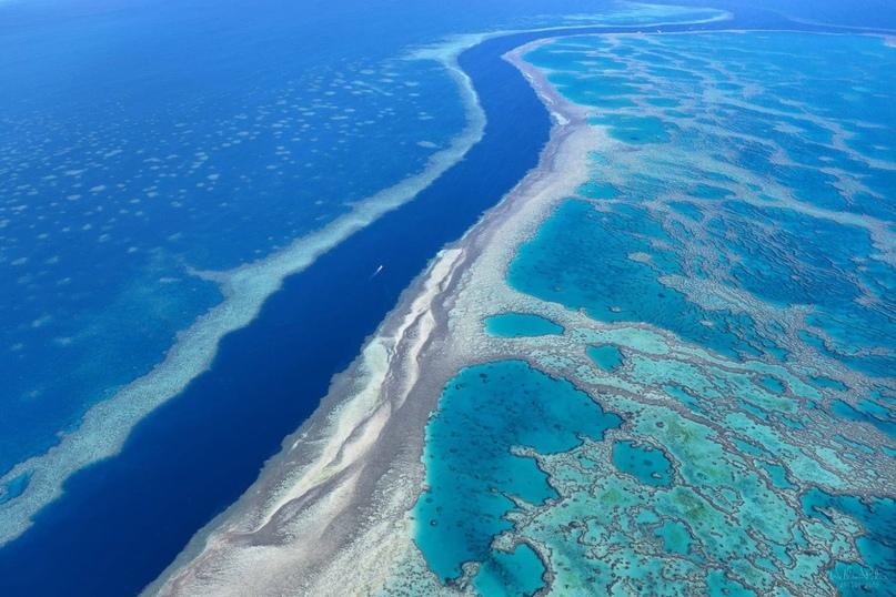Большой Барьерный риф, изображение №1