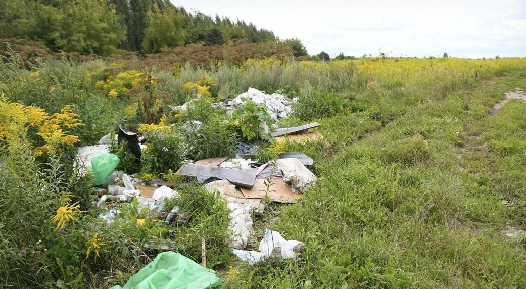 На сельскохозяйственных землях Судогодского района обнаружили три свалки общей площадью 1,5 гектара