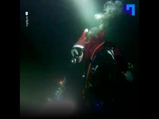 Крымские дайверы устроили новогодний хоровод на дне