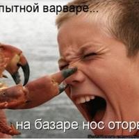 Фотография профиля Алексея-И-Алены Николаевы ВКонтакте