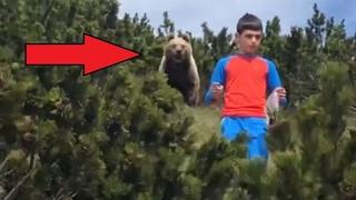 Еженедельная подборка лучших видео #2. Мальчик уходит от медведя