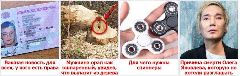 Все о тизерных сетях, изображение №1