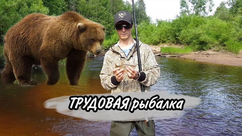 фильм 1 Рыбалка 2020 на северных реках медведь где то рядом
