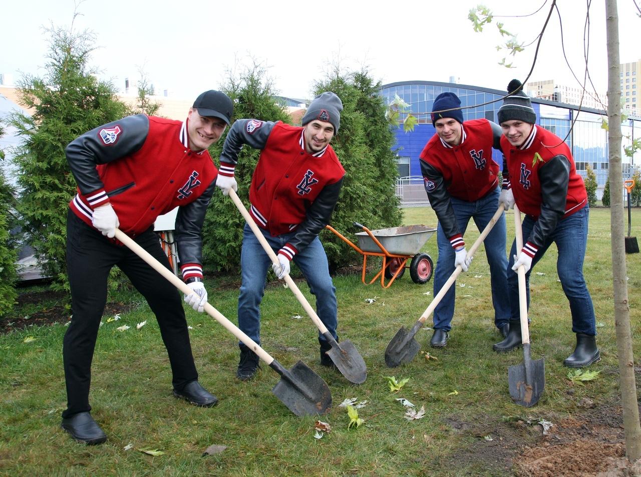 Хоккеисты ярославского «Локомотива» посадили серебряные клены на проспекте Фрунзе