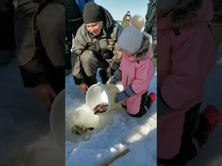 Арина отпускает рыбу / Новости Североуральска -