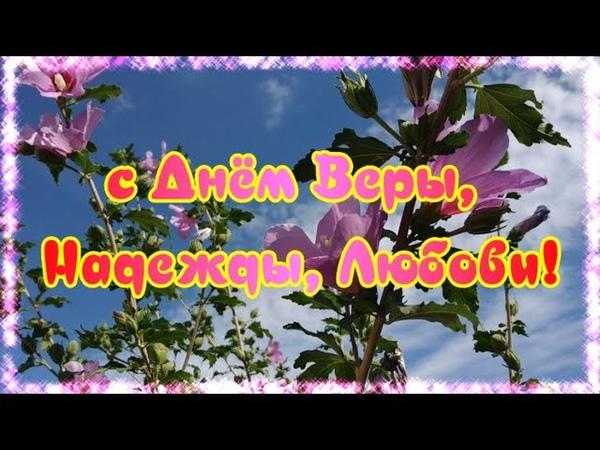 Красивое поздравление с Днем Веры Надежды Любви Живые цветы Музыкальная открытка