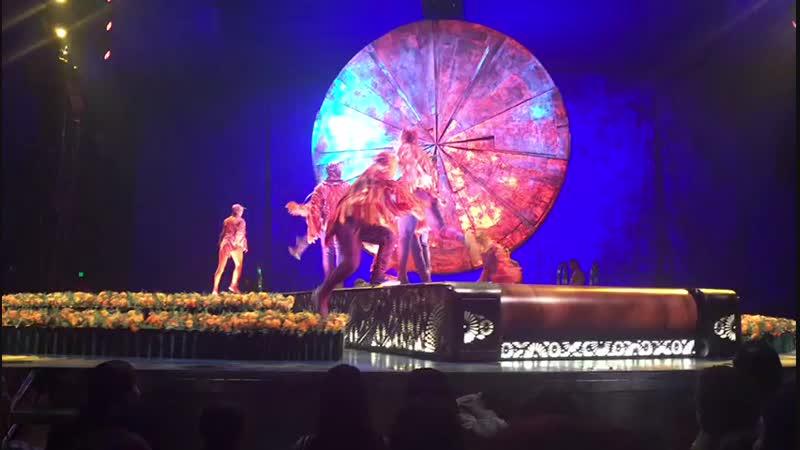 Цирк du Solei
