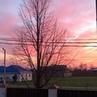 """Работа Деньги Бизнес on Instagram: """"Небесные прелести закат розовоенебо краснодарскийкрай краснодар сочи адлер анапа геленджик море пляж"""""""