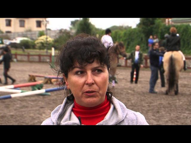 Вятка Московии 2013 Региональная выставка лошадей в ЧКСК Лаир
